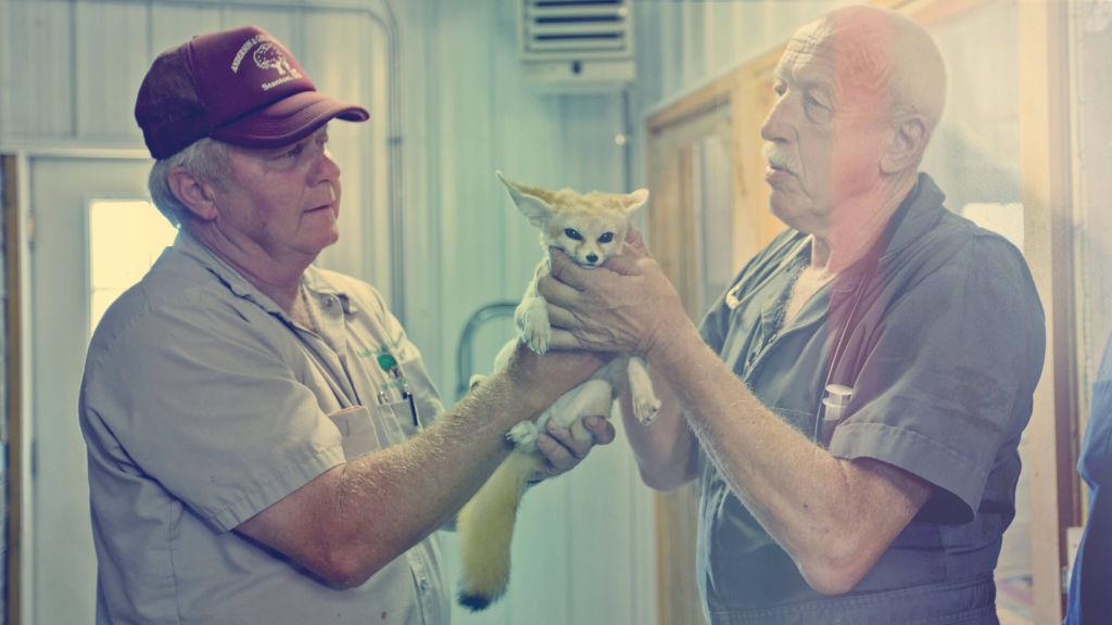 Uskomaton eläinlääkäri Pol - FOX - TV-kanava sinulle